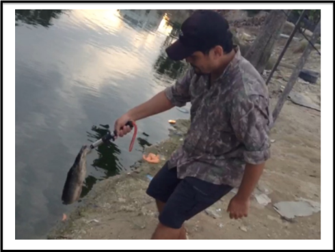 Lowering a tiny catfish to be released. Good fun for a small one.
