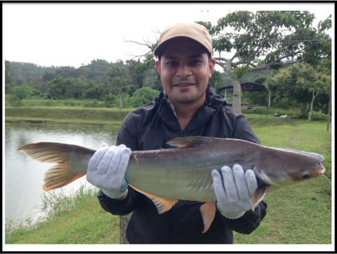 Naweshad's first Iridescent Shark on a fly.
