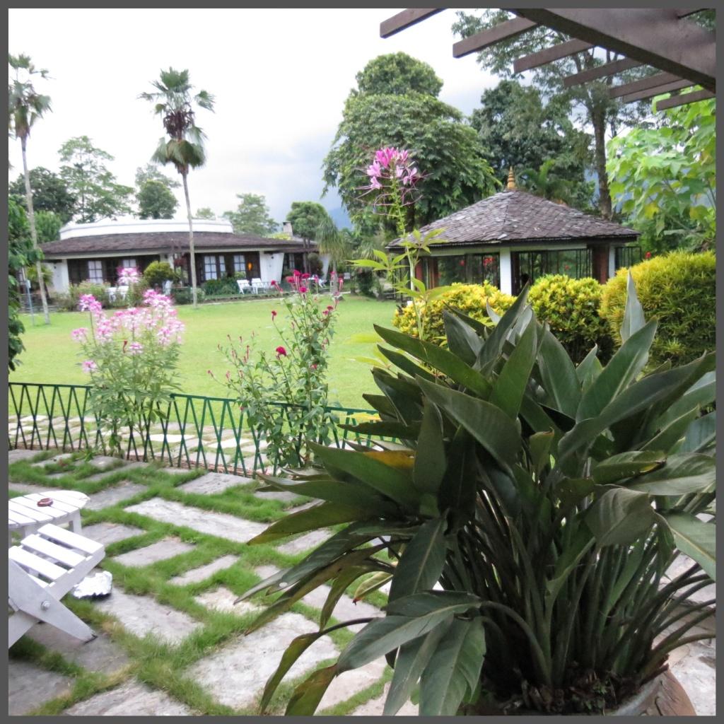 The Fishtail Lodge