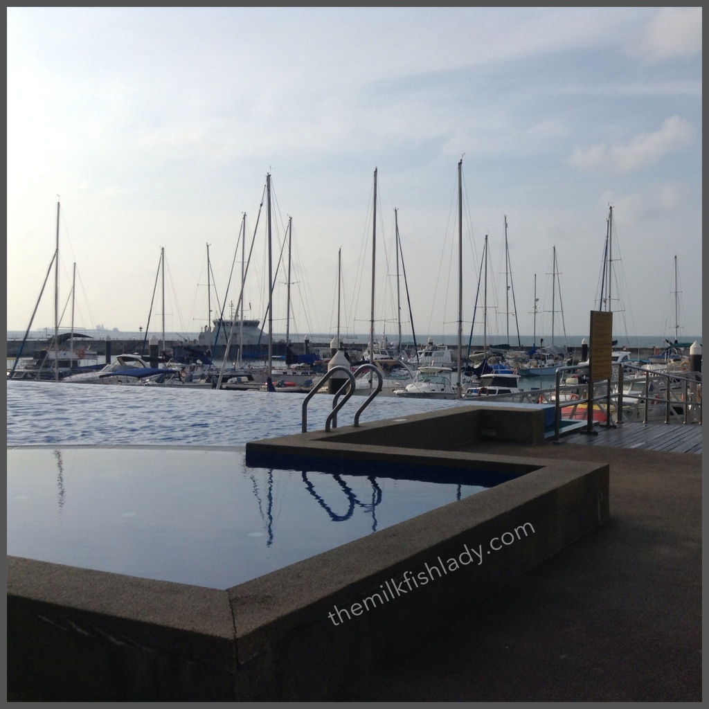 Beautiful morning at the SAF Yacht Club