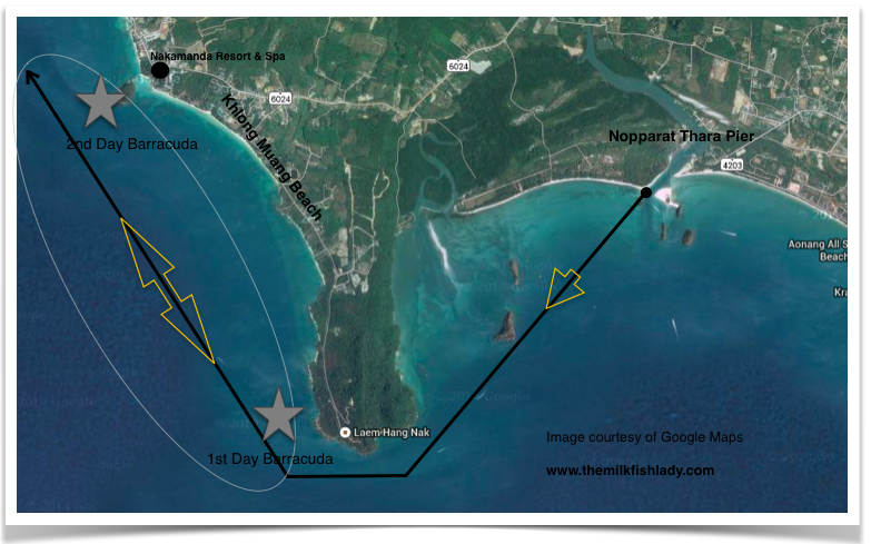 Route we took on the long-tail boat. Stars mark spot where Barracudas were caught.
