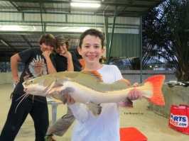 NEFFP (Rawang), Patrick and his Redtail Catfish, caught and released safely