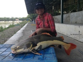 Ayesha managed to finally land and safely release a beautiful Redtail Catfish