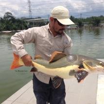 Natural Exotic Fish Fishing Pond Behrang