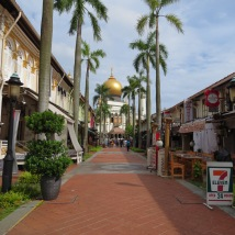 Right behind is the iconic Sultan Mosque of Singapore, the streets come alive at night with a variety of Restaurants to choose from.