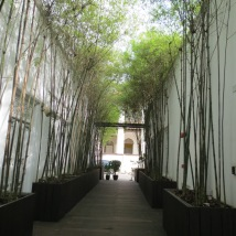 A lovely cool walkway between the shophouses