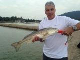 Red Fish (Jugra)