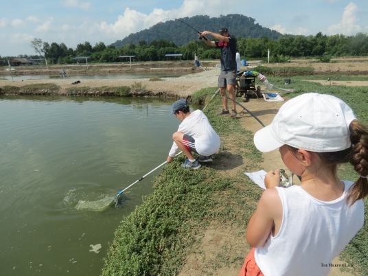 Patrick assisting Mary to net and safely land the fish