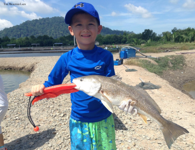 Myles was one of the sweetest boys we have fished with, he was filled with so much joy finally landing his dad's favourite fish, the Red Drum